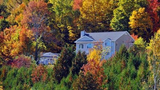Foliage d'autunno nel New England