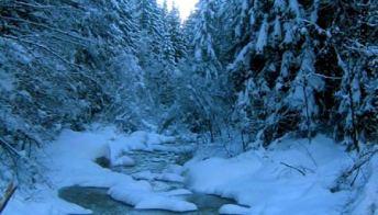 Dolomiti: trekking con le ciaspole