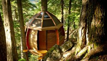 Canada: la casa sull'albero è un loft di lusso