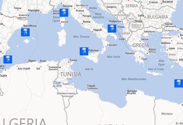 Mare Mediterraneo Cartina.Meduse Invadono Mediterraneo Le Localita Di Mare Piu A Rischio Mappa Siviaggia