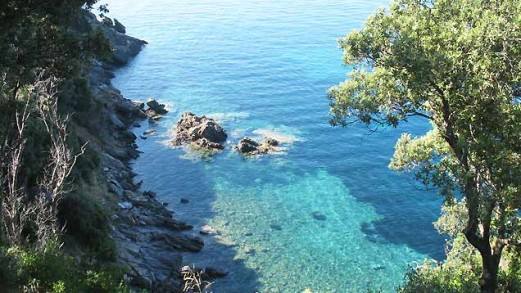 Le coste più belle dell'isola d'Elba: da Sansone a Felciaio