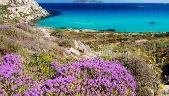 Isole Egadi da sogno: Marettimo, un giardino in mezzo al mare. Foto