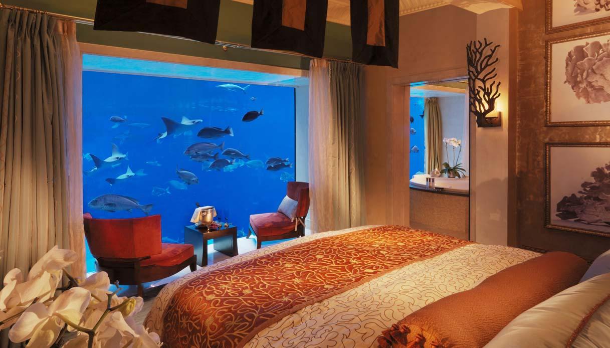 Dormire In Un Acquario Circondati Da Mante Squali E Pesci Colorati Siviaggia