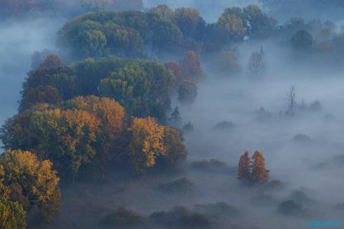 01_Fotografare-la-nebbia_500