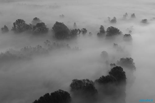 03_Fotografare-la-nebbia_500
