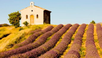 Cassis in Provenza tutto in un weekend