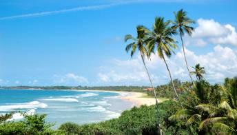 Visto Turistico per lo Sri Lanka: dove richiederlo, costi e durata