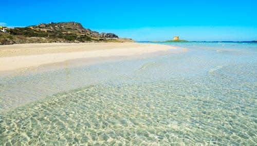 la-pelosa-spiaggia_th_500