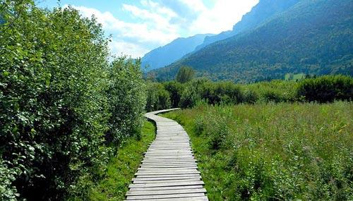 sentiero-biotopo_Fiave-w