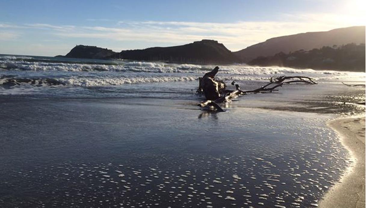 Feniglia spiagge più belle dell'argentario