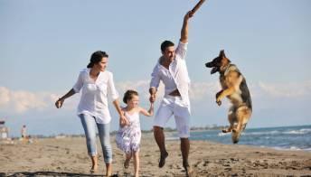 Spiagge per cani a Riccione