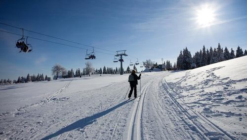 sciare-estero-rogla_th_500