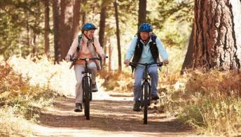 La pista ciclabile della Valle Olona: percorso e informazioni