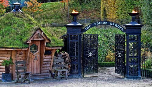 Alnwick-garden_01_500