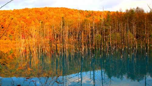 blue-pond-hokkaido-autunno