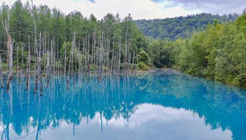 blue-pond-hokkaido-estate