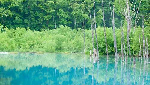 blue-pond-hokkaido-primavera