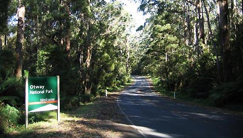 otway-national-park