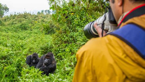 ruanda-safari-t