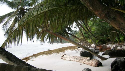 corisco-spiaggia