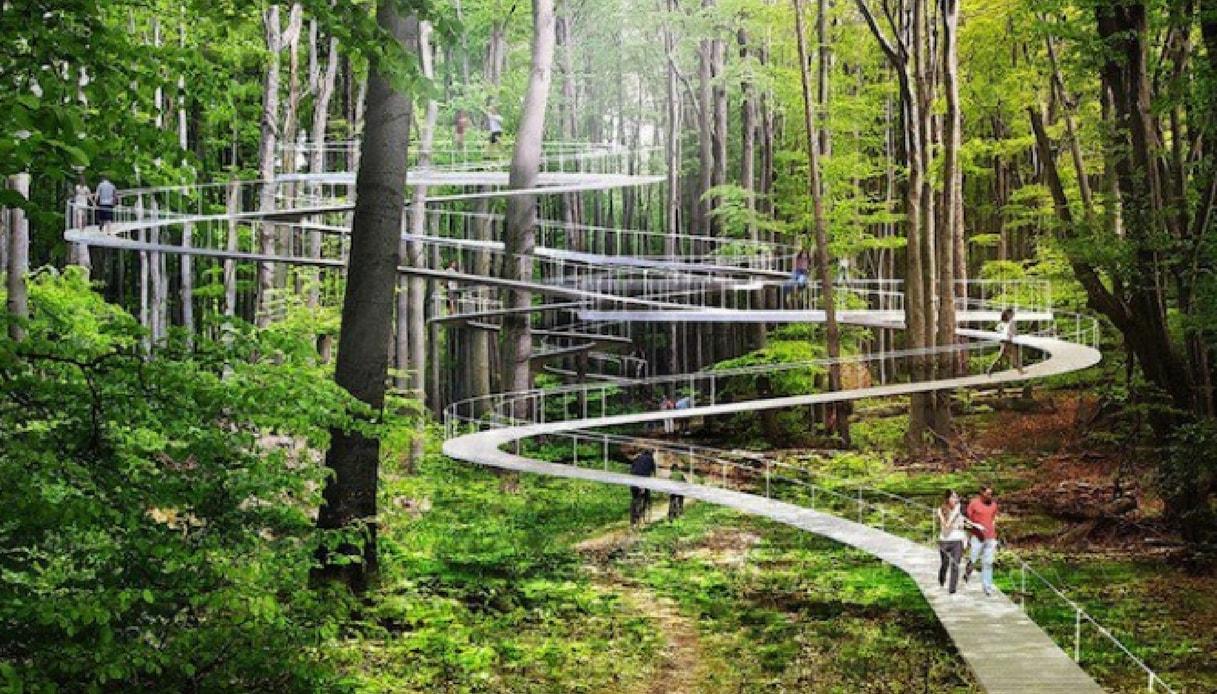 Parco tra gli alberi