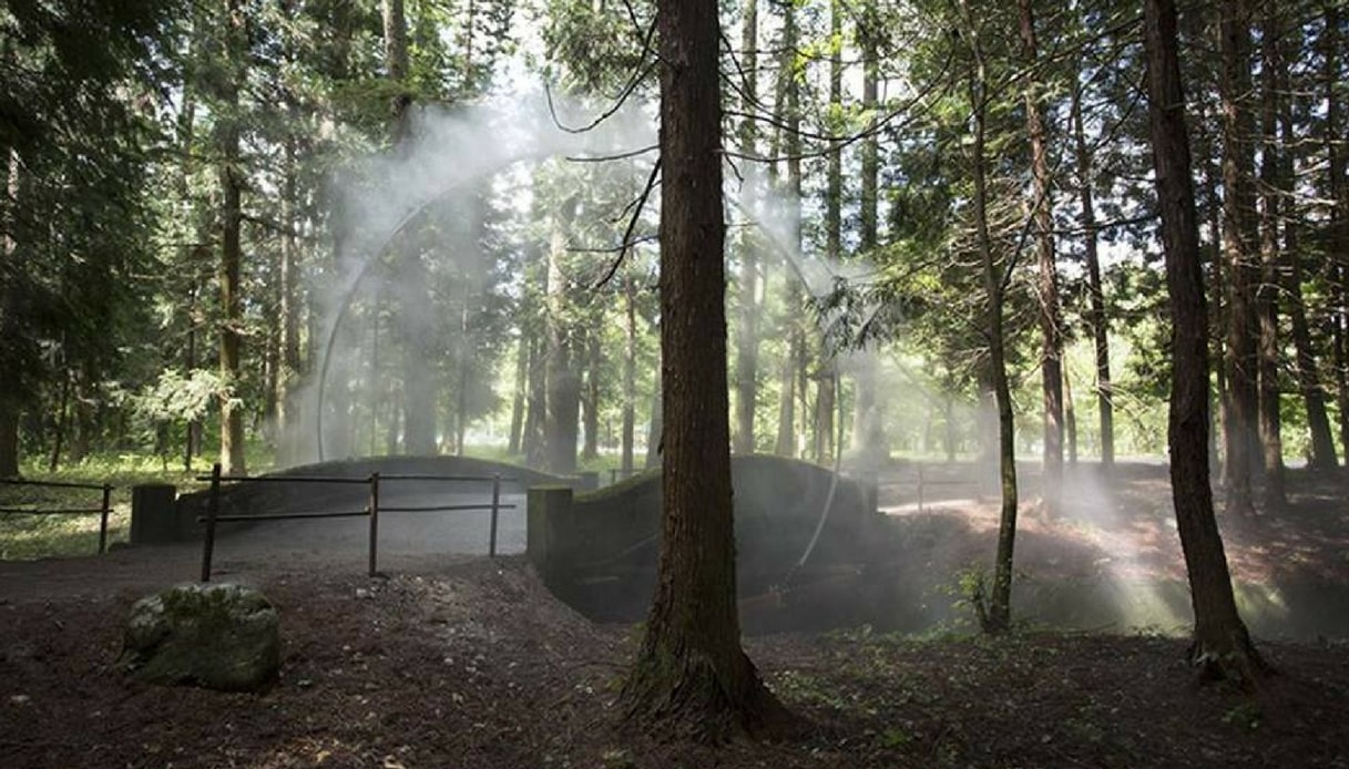 Nel bosco di Omachi esiste un anello di nebbia che porta in un mondo magico