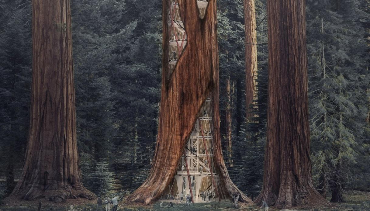 Giant Sequoia Skyscraper: il grattacielo futuristico realizzato all'interno di una sequoia gigante