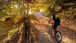 Via degli Dei in mountain bike, sugli antichi tracciati romani