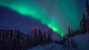 Viaggio in America: sulla Panamericana da Denver all'Alaska