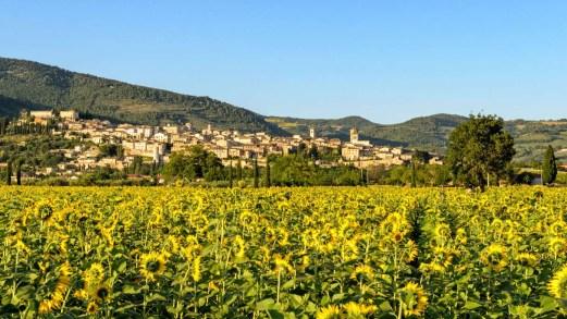 In viaggio a Spello, storia e arte nel cuore dell'Umbria