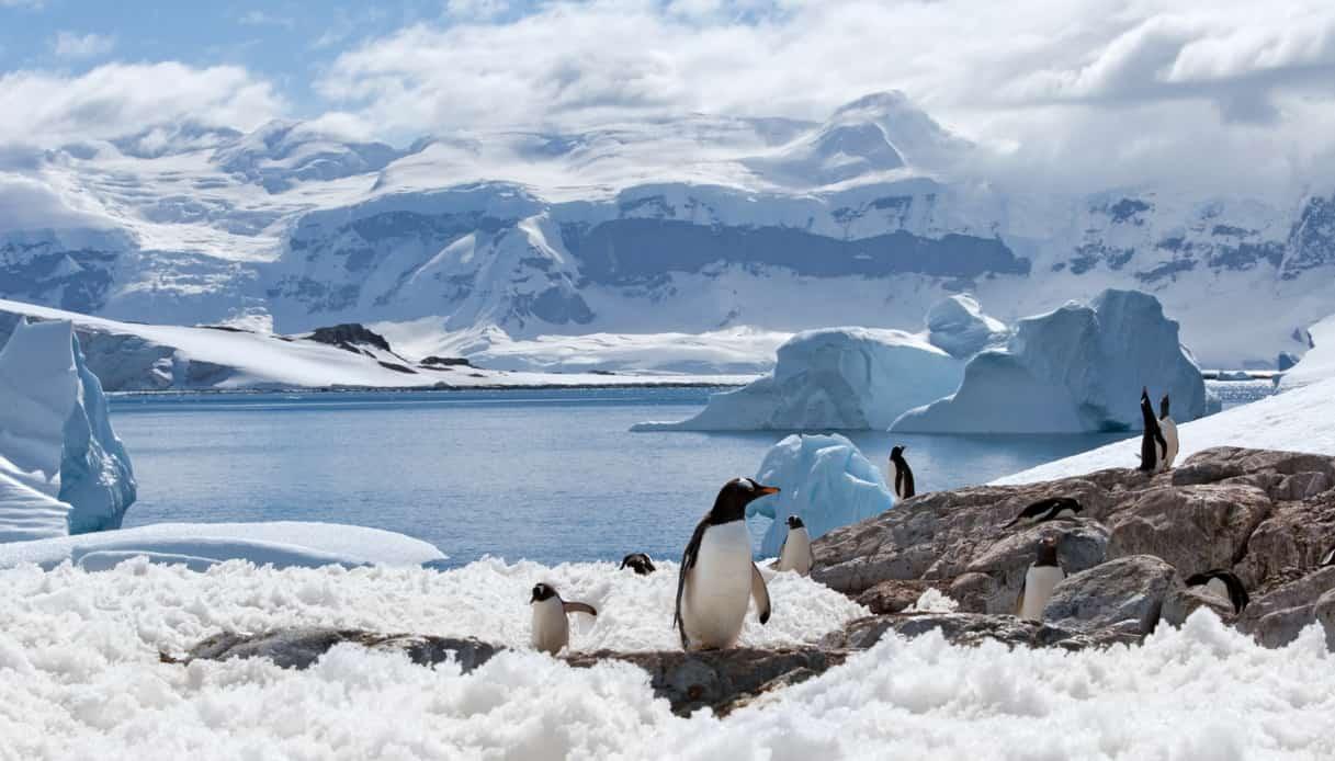 È stato scoperto un mondo nascosto sotto i ghiacci dell'Antartide