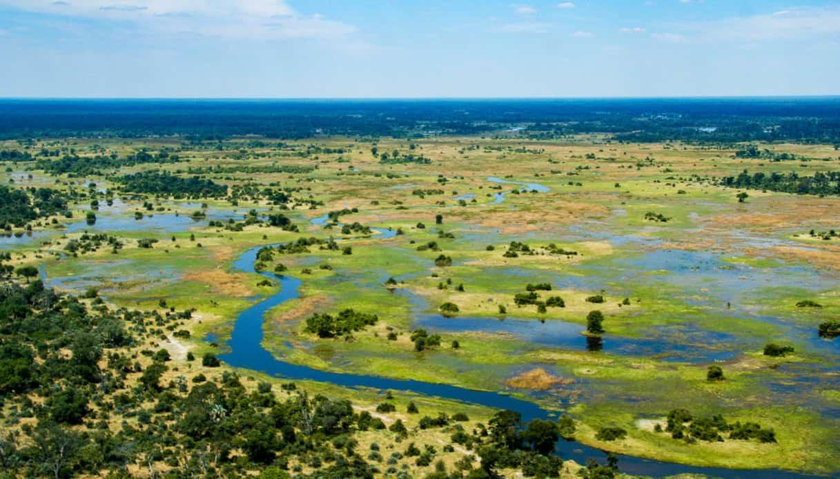 Cosa vedere il Botswana: il delta del fiume Okavango