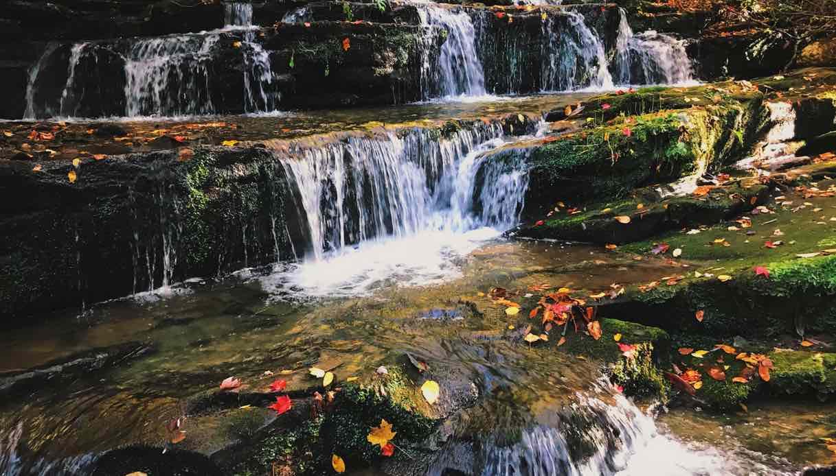 La guida dei parchi più belli degli Stati Uniti