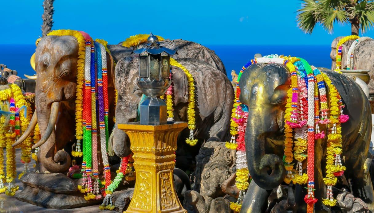 tailandia santuari elefanti