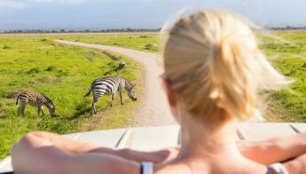 Tutti i consigli per un safari fai da te in Sudafrica