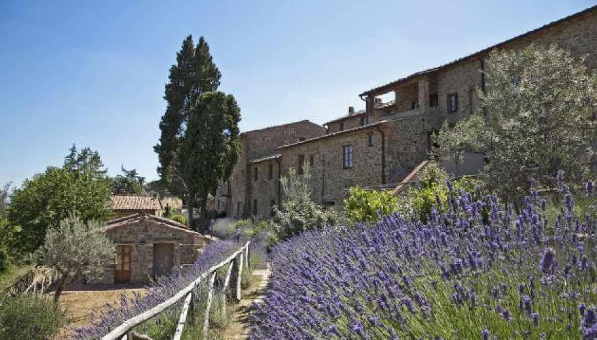 Campi di lavanda in Toscana