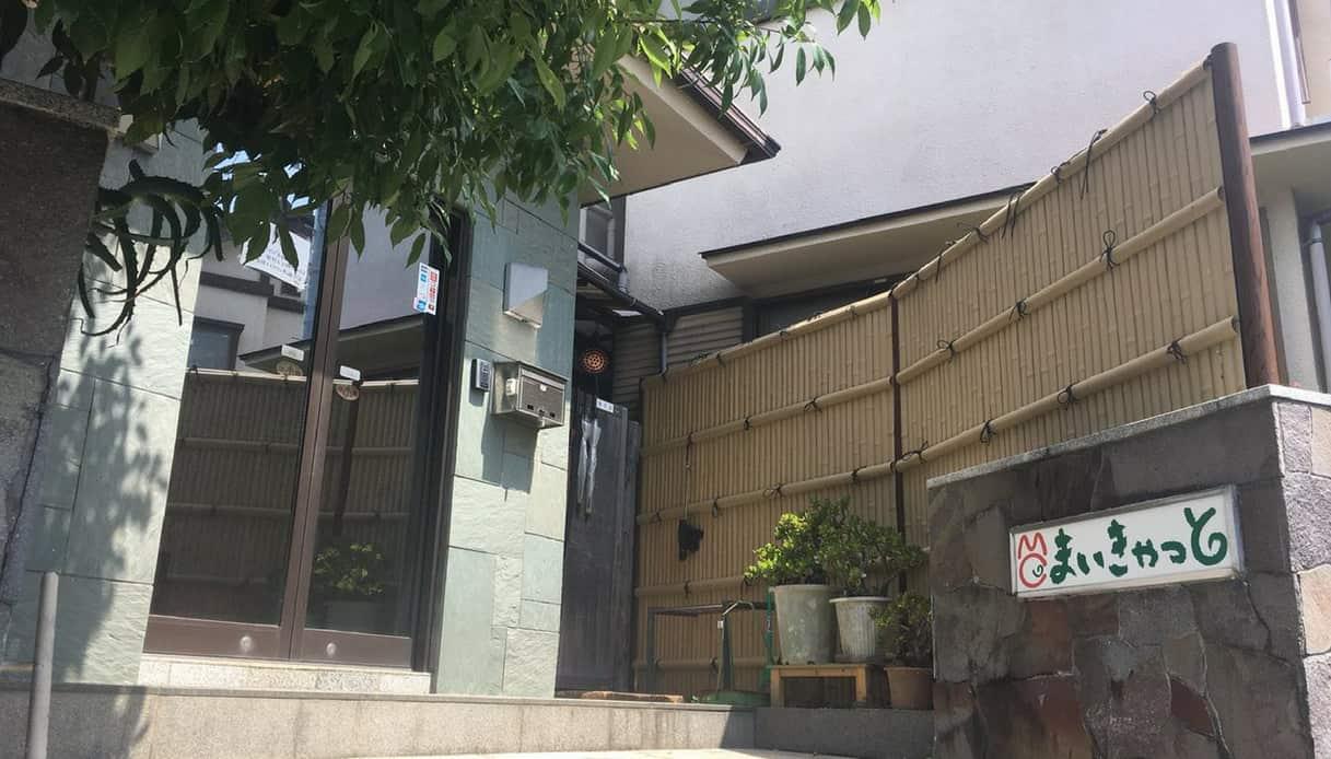Hotel gatti Giappone