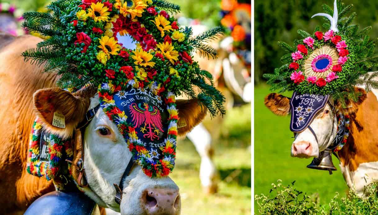 A Ebbs, carnevale dei fiori