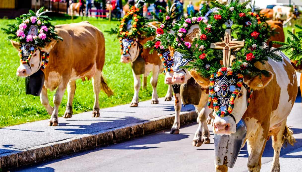 A Ebbs, in Austria, nel paese del Carnevale dei fiori