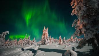 A caccia d'aurore boreali in Lapponia: ecco il lavoro dei sogni