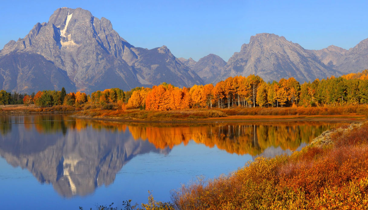 yellowstone-foliage-montana-stati-uniti