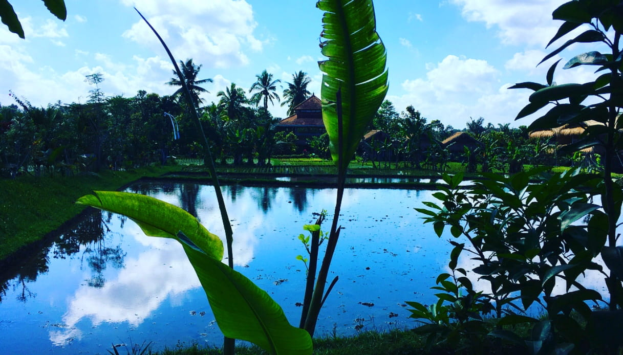 Bali Silent Retreat