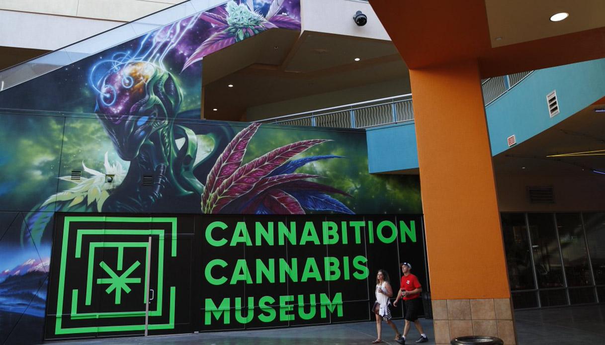 cannabis-museum