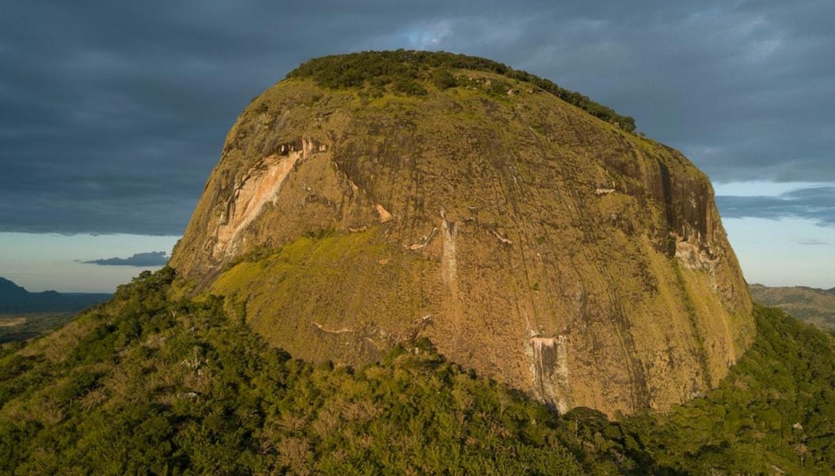 foresta segreta mozambico