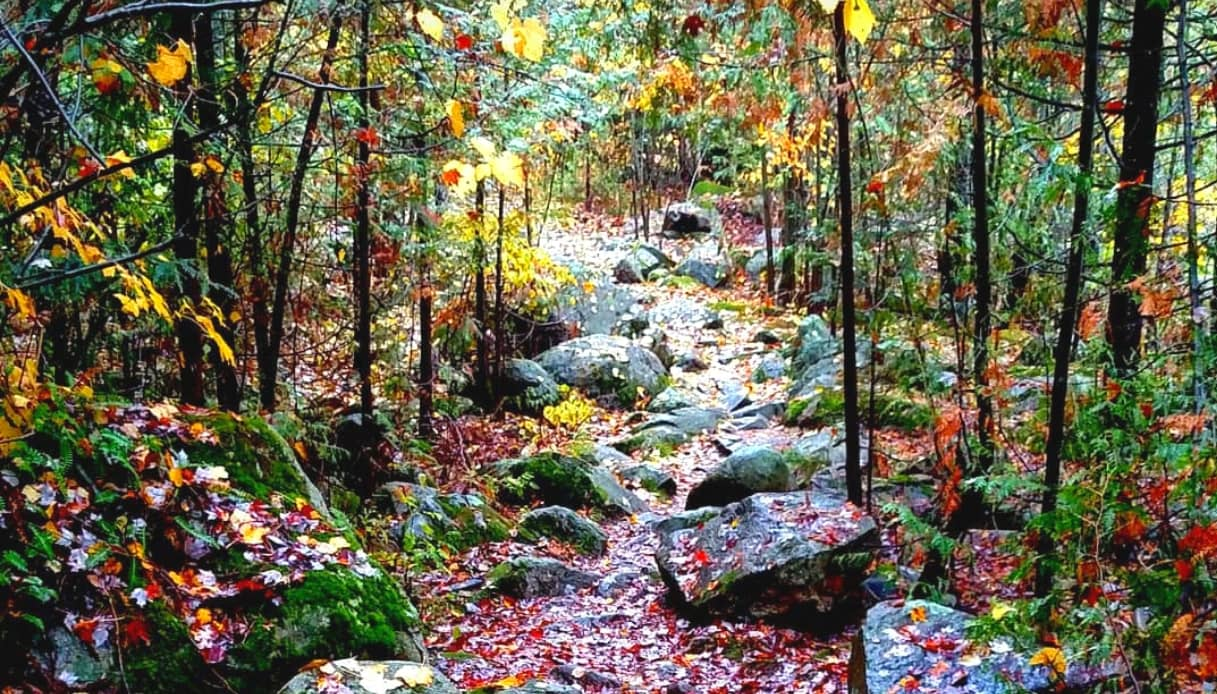 Ice Age Trail - Wisconsin