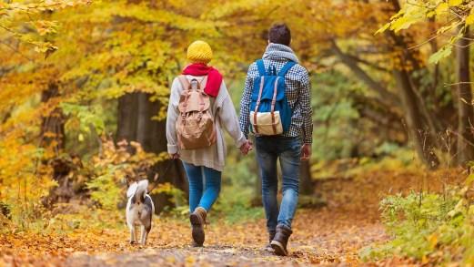 Le più belle passeggiate d'autunno, tra castagni e Törggelen