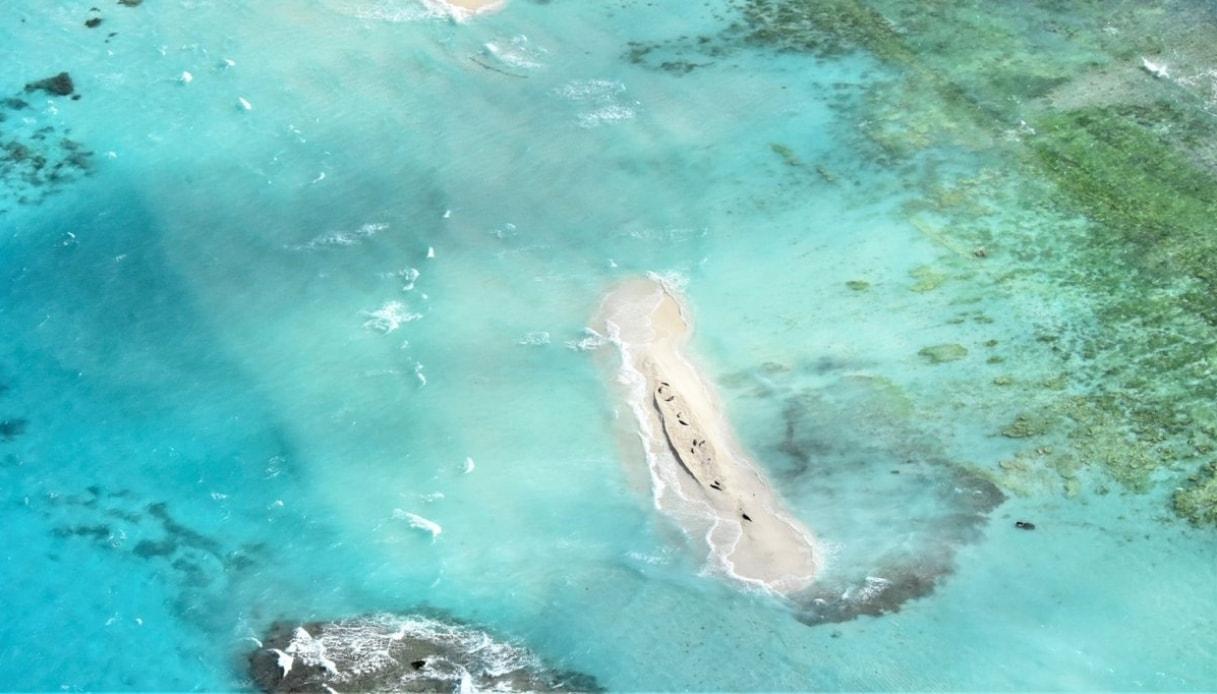 Alle Hawaii, è scomparsa un'intera isola che dava rifugio a foche e tartarughe