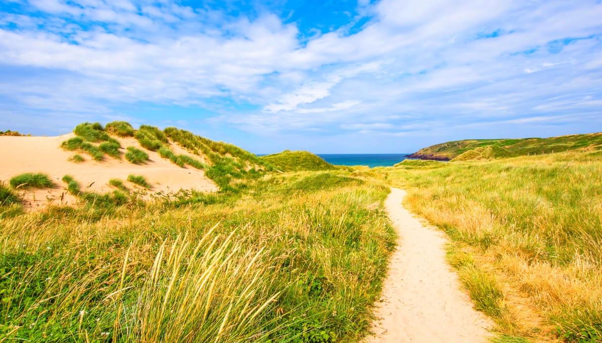 Freshwater West - Pembrokeshire