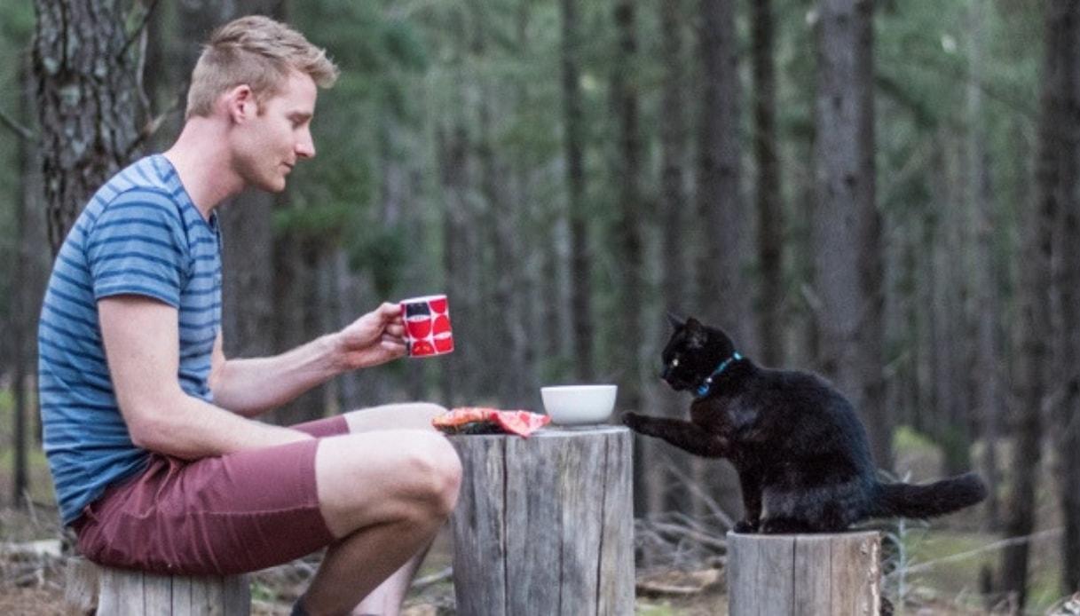 In viaggio per l'Australia con il gatto