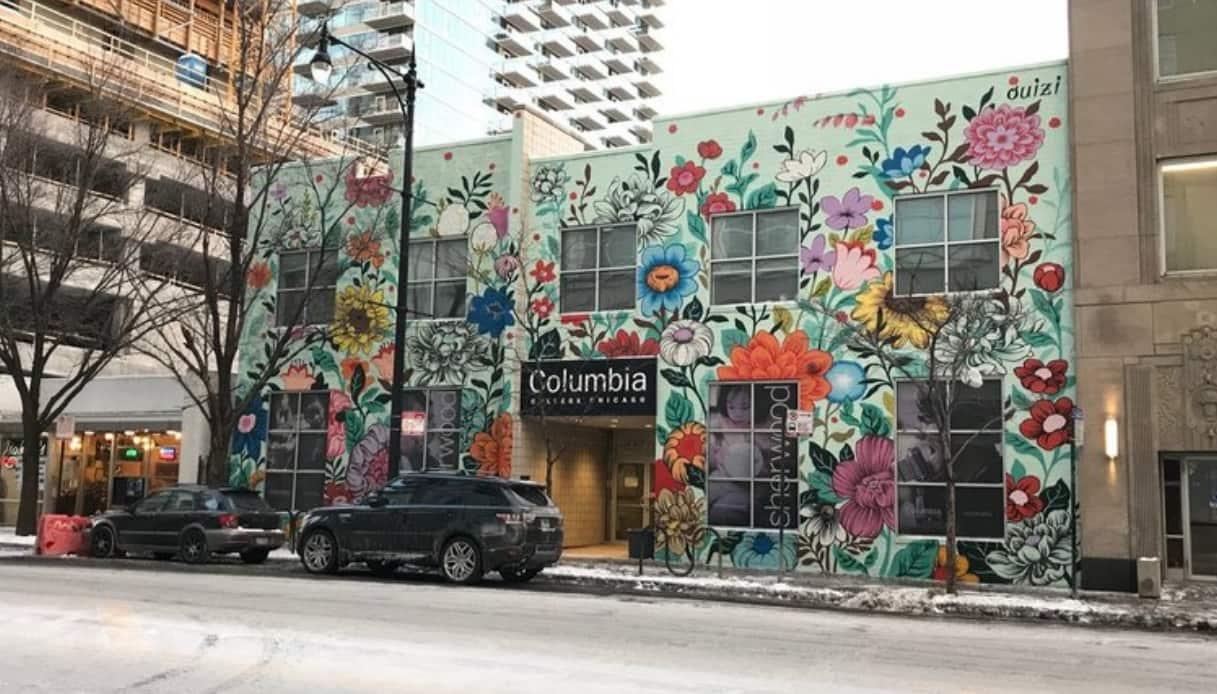 Murales fiori america